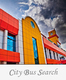 City Bus Search